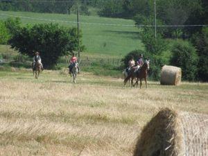 Passeggiate a Cavallo nella Val Trebbia