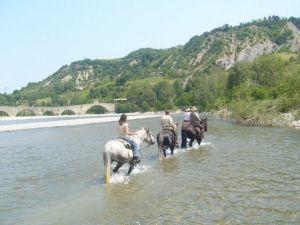 Passeggiate a Cavallo nei pressi del ponte