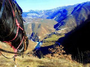 A cavallo nella Val Trebbia